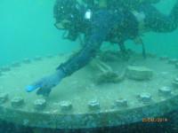Air Diving